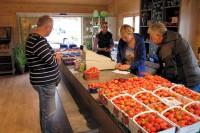 Bij binnenkomst in Xanten zien we een grote fruitkraam; nog even wat inkopen doen!