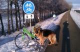 Santos bij de fiets