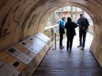 Een houten tunnel waarin van alles te leren valt...