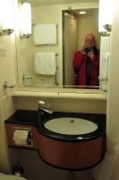 De badkamer met douche en toilet.