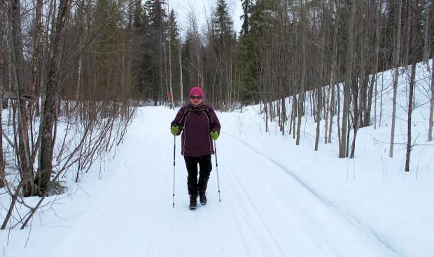Wandelen door de verse sneeuw in het bos...