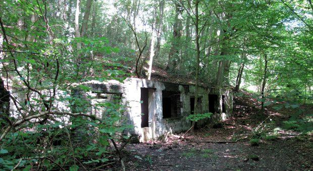 Een ander deel van de overgebleven gebouwen. Geen idee waar ze voor gebruikt werden...