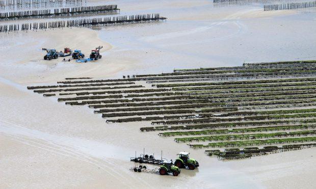 De mosselkwekers aan het werk op de zeebodem. Het is zaak op tijd te vertrekken!