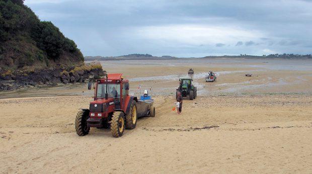 Ook de tractoren keren terug 'uit zee'...