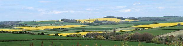 Zomaar een plaatje onderweg in het graafschap Dorset.