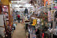 De winkel-van-sinkel in Chaqford. Allemaal kamertjes, trappetjes, een enorme oppervlakte aan artikelen...