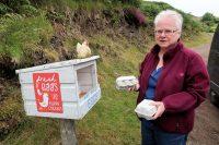 Eieren, ter vervanging van onze Nederlandse eieren...