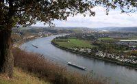 Uitzicht over de Rijn vanaf de Erpeler Ley.
