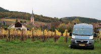 Bij de wijnboer in de wijngaard.