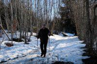 De wandeling gaat verder door het bos.