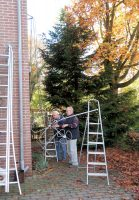 Herman en ik bezig met het ontmantelen van de oude mast.