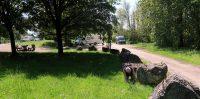 Op de camperplaats in Langres, geocache gevonden!