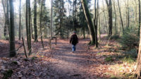 Mooi weer, dus een mooie wandeling!