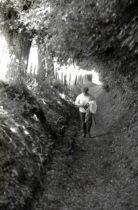 Wandelen door een holle weg. Ontstaan door eeuwen van erosie.