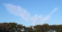 Engelen in de lucht??
