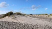 Op het strand.