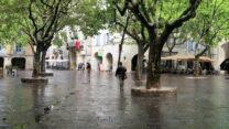 Het grote plein 'Place des Herbes.'